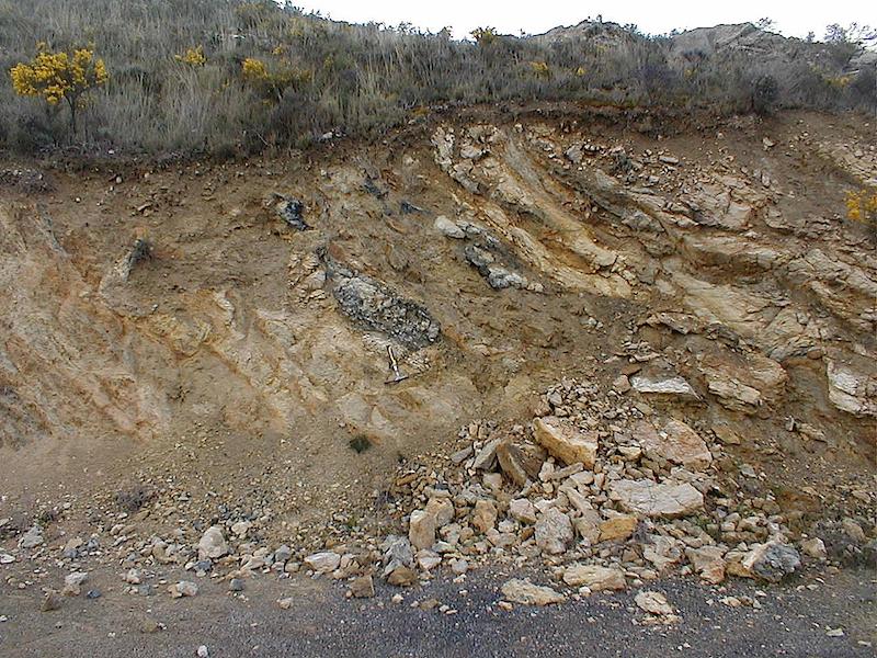 Cambrico inferior del cabalgamiento de Daroca fuertemente deformadas e indentadas