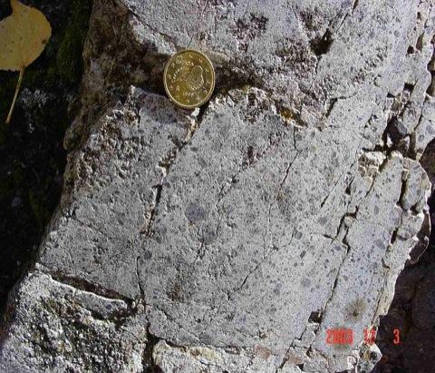 Textura en mortero en la megabrecha del Muschelkalk, bloque de Olalla, impacto de Azuara