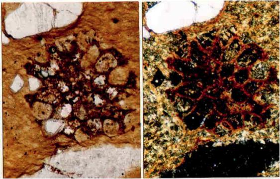 arenisca diapléctico impacto de Azuara